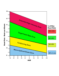 Chart: Heart Rate Age Chart