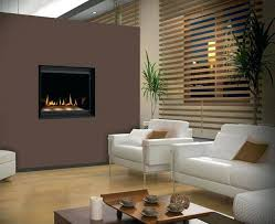 gas fireplaces fireplace inserts ventless installation instructions regency