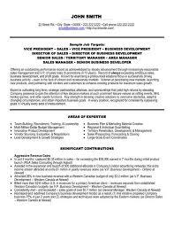 Retail Sales Executive Resume 17 Sales Executive Resume Format