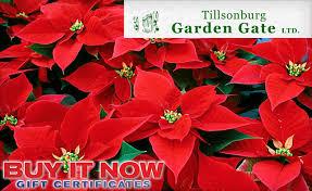 10 for 20 towards gardening supplies from tillsonburg garden gate ltd wagjag