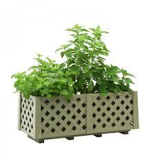 lemonbalm basil mint herbs in hg 2810 planterbox l48 5cmxw22