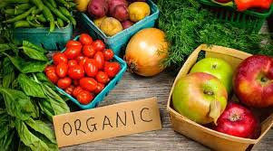 Sustainable living: Why consuming organic food is good for health |  Lifestyle News,The Indian Express