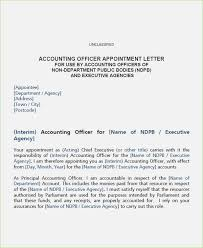 Appointment Letter Format For Chief Operating Officer – Thepizzashop.co