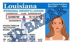 Louisiana Driver Template License Psd