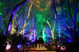 Enchanted Forest Of Lights Descanso La Descanso Gardens Enchanted Forest Of Light No
