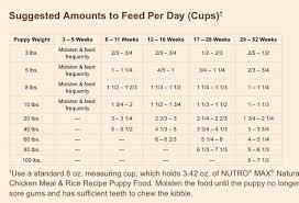Nutro Puppy Feeding Chart Puppy Feeding Guide Puppy