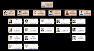 School Organization Charts All You Need To Know Organizational Chart