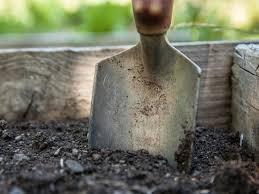 landscape gardener or a builder