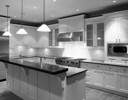 kitchen cabinet doors white cabinets quantiply door pulls cup pull hardware custom handles mid century distressed