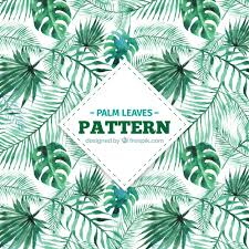 Palm Leaf Pattern Awesome Decorative Pattern Of Watercolor Palm Leaves Vector Free Download