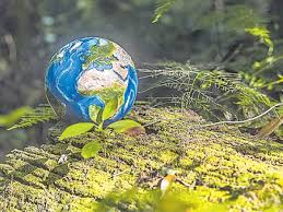Restore Our Earth Theme Based Earth Day 2021 Special Story