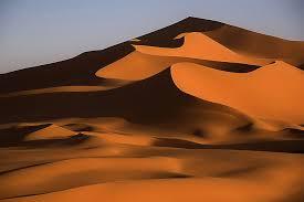 Пустыня Сахара в Африке животные растения карта Интересные  Песчаную пыль с Сахары сильные ветра