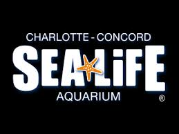 Print Home Work How Does The Print Home And Mobile Ticket Work Sea Life Charlotte