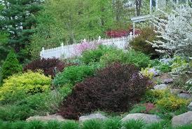 Small Picture Garden Design For Slopes Image Of Hillside Landscape Ideas Rock