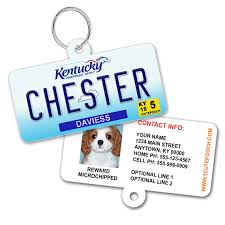 Kentucky 1 Id Plate Tag Custom Pet - License Cute Pooch