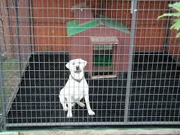 awesome dog kennel flooring outdoor kennel building a platform for indoor dog kennel flooring ideas