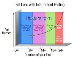 fat loss with intermittent fasting explained ifasters fat loss process fat loss diagram