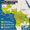 ape diseases