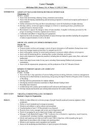 Sample Sports Resume Sports Assistant Resume Samples Velvet Jobs