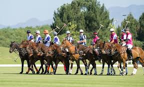 essays of africa polo with a purpose