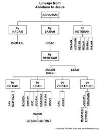 Abraham Generation Chart Chart Showing The Lineage From Abraham To Jesus Bible