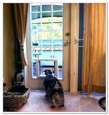 solo pet door solo pet door electronic dog doors for a sliding glass with manual