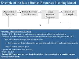 human resource planning example of the basic human resources