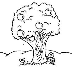Small Picture Apple Tree and Flower Colouring Page Happy Colouring