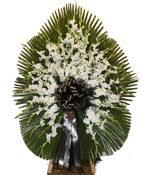 Image result for گل عزاداری