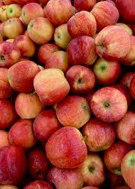 27+ Apples Pictures