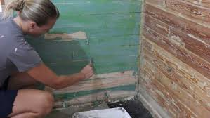painting plaster wallsPainting On Plaster Walls  4000 Wall Paint Ideas