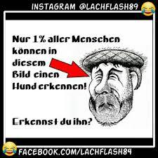 Hahaichkannnichtmehr Instagram Photos And Videos Instagram Viewer