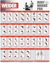 Weider Body Works Pro Chart Weider Ultimate Body Works Workout Guide Anotherhackedlife Com