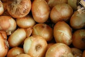 regrow hair with onion juice