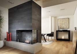 bioethanol fireplace insert central scope 500