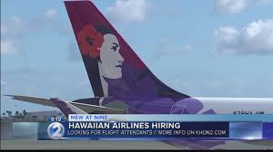 hawaiian airlines hires flight attendants bilingual positions included bilingual flight attendant jobs