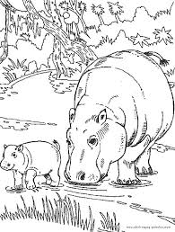 Small Picture Baby Hippo Black And White Coloring Coloring Pages