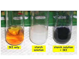 Iki Solution Biological Molecules Enzymes Medical Biochemistry Department Ppt