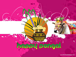 happy pongal wishes hd images in tamil pics happy pongal
