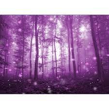 การถ่ายภาพพื้นหลังสีม่วงลึกลับป่า Foggy ธีมฮาโลวีนฉากหลัง Professional ภาพ พื้นหลังสตูดิโอ Prop|Background