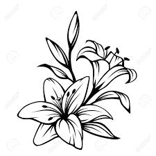 Clipart Fiori Bianco E Nero
