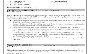 Template Senior Technical Project Manager Resume Sample Executive