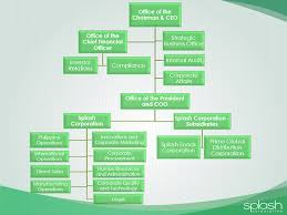 Corporate Organizational Chart Organizational Chart Splash
