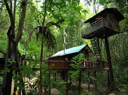 Best Price On Khaosok Treehouse Resort In Khao Sok Suratthani  Khao Sok Treehouse