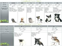 Toy Dog Growth Chart Standard Poodle Weight Chart Achievelive Co
