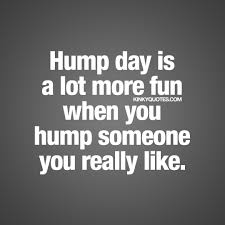 Hump Day Is A Lot More Fun When You Hump Someone You Really Like