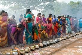 pongal festival in andhra pradesh festival in andhra pradesh pongal