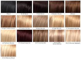 Chestnut Hair Colour Chart Light Brown Hair Color Chart Fooru Me