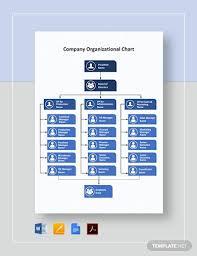 Organizational Chart Of A Company 33 Company Organizational Chart Templates In Google Docs