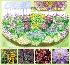 Small Picture Perennial Border Flowers Sunny Perennial Border 17 Plants Buy